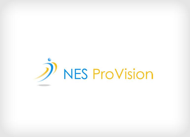 nes-pro-vision1